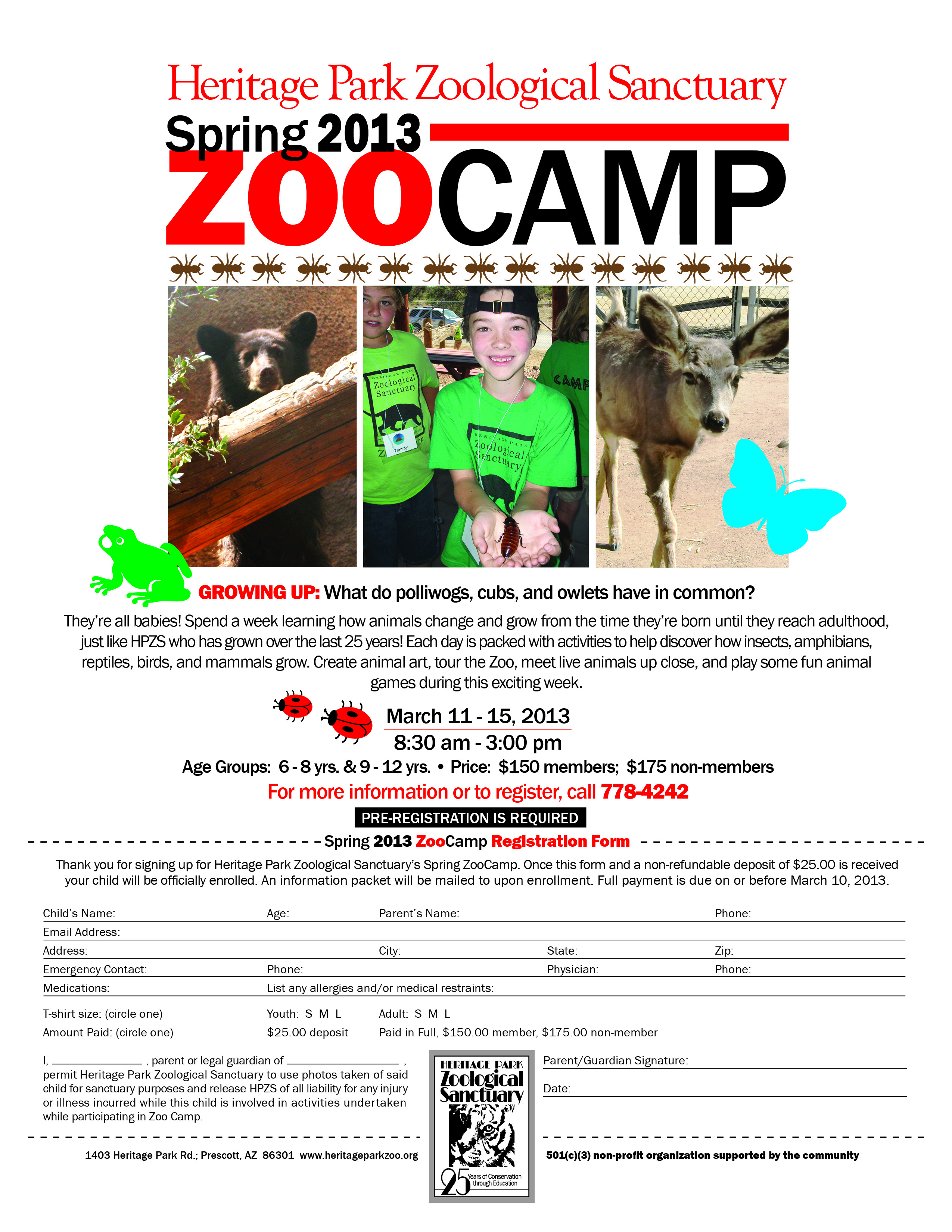 13-008 spring zoo camp flyer - copy